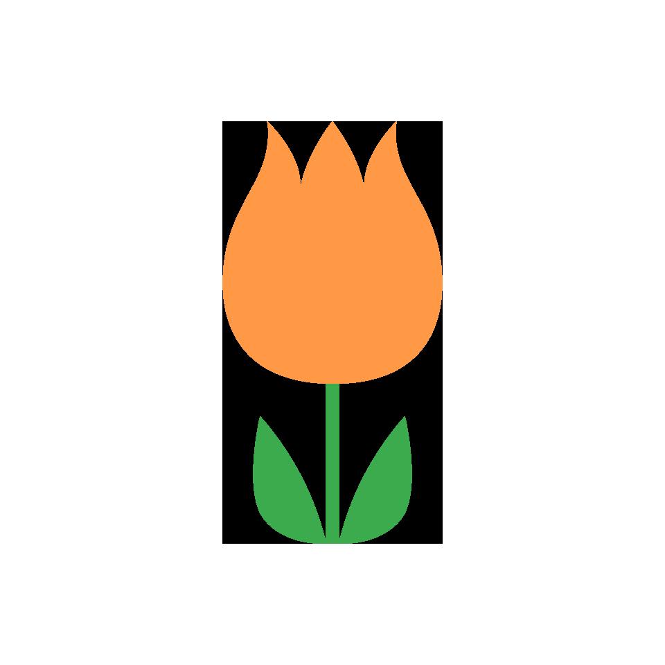 オレンジ色系の花