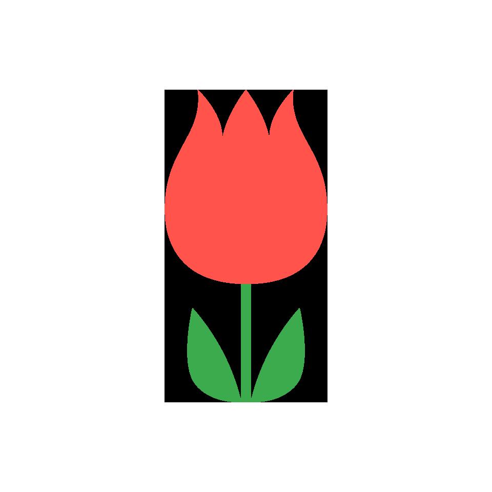 赤色系の花