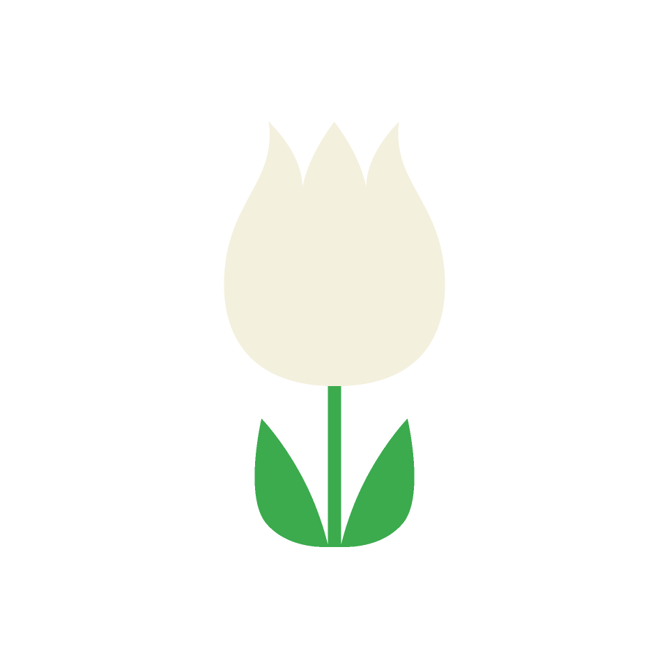 白色系の花