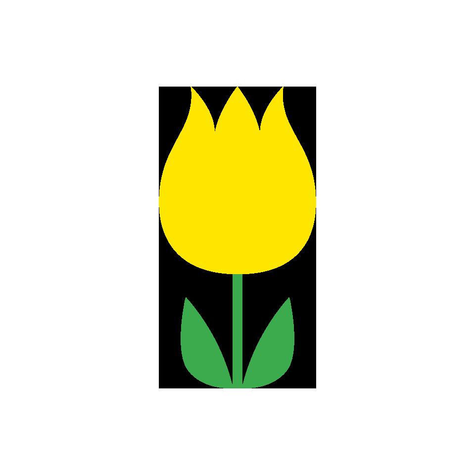 黄色系の花